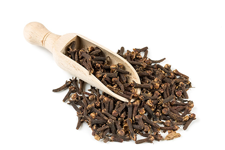 Clove oil as an Antitoxin
